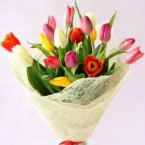разноцветные-тюльпаны