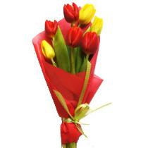 7-карасных-и-желтых-тюльпанов